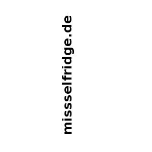 Missselfridge.de – Erfahrung & Test